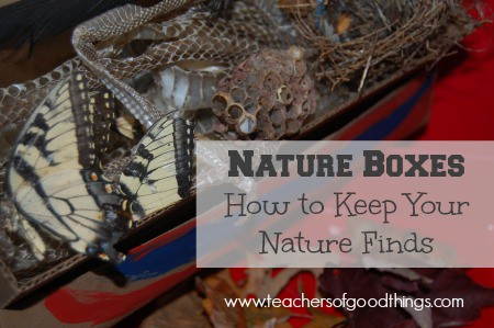 Learn how to keep your nature finds in a keep sake box.