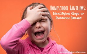Homeschool Tantrums: Identifying Gaps or Behavior Issues | www.teachersofgoodthings.com