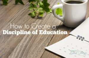 How To Create a Disciple of Education | www.teachersofgoodthings.com