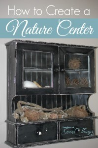 How to Create a Nature Center | www.teachersofgoodthings.com