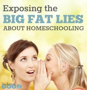 Exposing the Big Fat Lies About Homeschooling - These are the ones that most of us believe as truth and thus, the most dangerous. | www.teachersofgoodthings.com